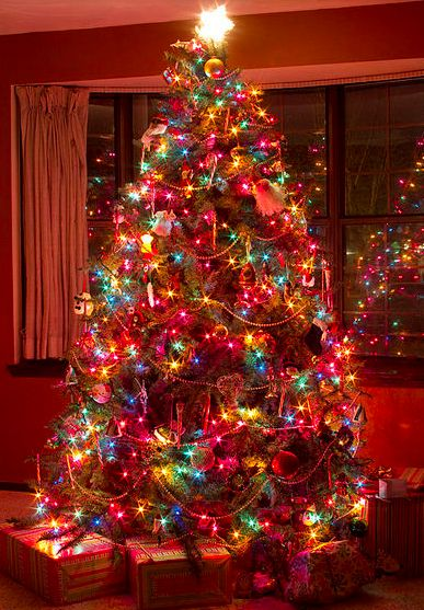Because Kide Love A Colorful Christmas Tree Colored Lightsbest