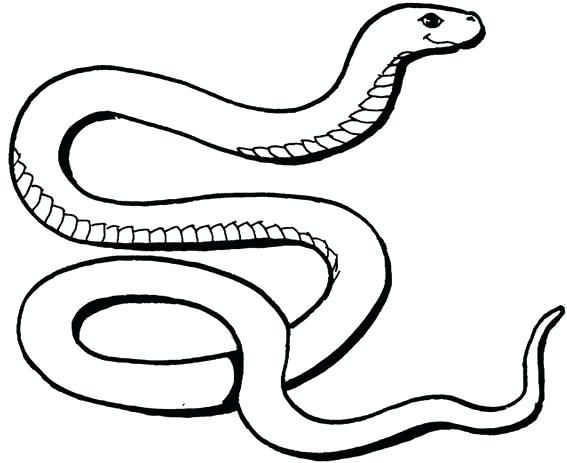 Snake Coloring Pages Snake Coloring Pictures Snake Colouring Sheet Free Snake  Colouring V… Snake Coloring Pages, Super Coloring Pages, Transformers Coloring  Pages