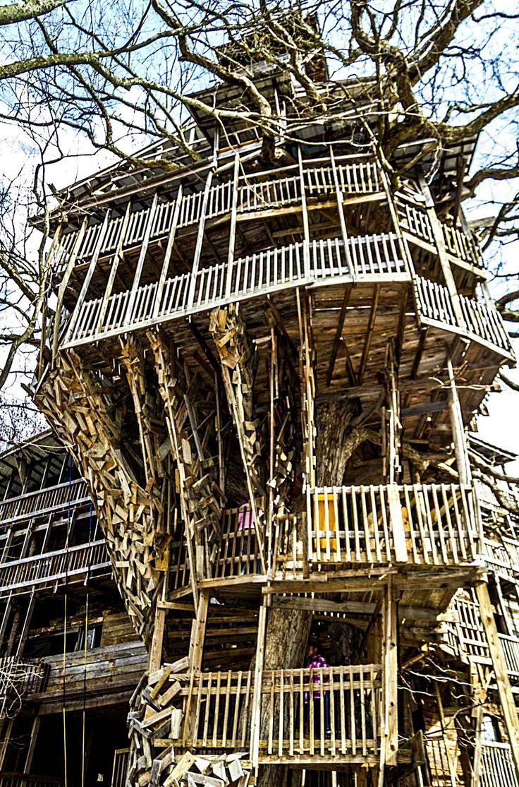 Cette maison se trouve à Crossville dans le Tennessee. Il s'agit de la plus grande maison en arbre jamais réalisée. Le penseur complètement fou de ce projet se nommeHorace Burgess. Il lui aura fallu 11 ans pour réaliser son arbre-cathédrale. D'une superficie de 1.300 m2, plus de 30 mètres de haut, cet édifice contient 13 étages, avec chapelle, balcons, fenêtres et le tout sur sept arbres.