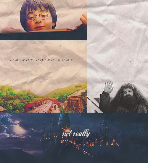 1559 Best Images About Harry Potter Volume 2⚡️ On