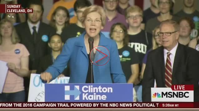 """Elizabeth Warren Hysterically Shrieks: """"Donald Trump Has More Support From The Aryan Nation And The Ku Klux Klan"""" Than GOP Leadership…"""