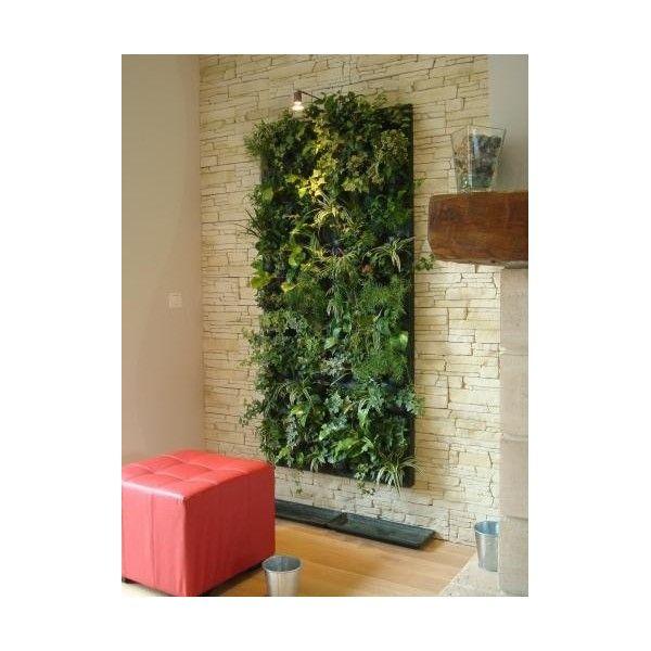 Les 37 meilleures images du tableau mur v g talis sur - Mur vegetalise interieur ...