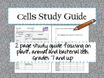 Energy Study Guide (6th Grade) JMMS Flashcards - Cram.com