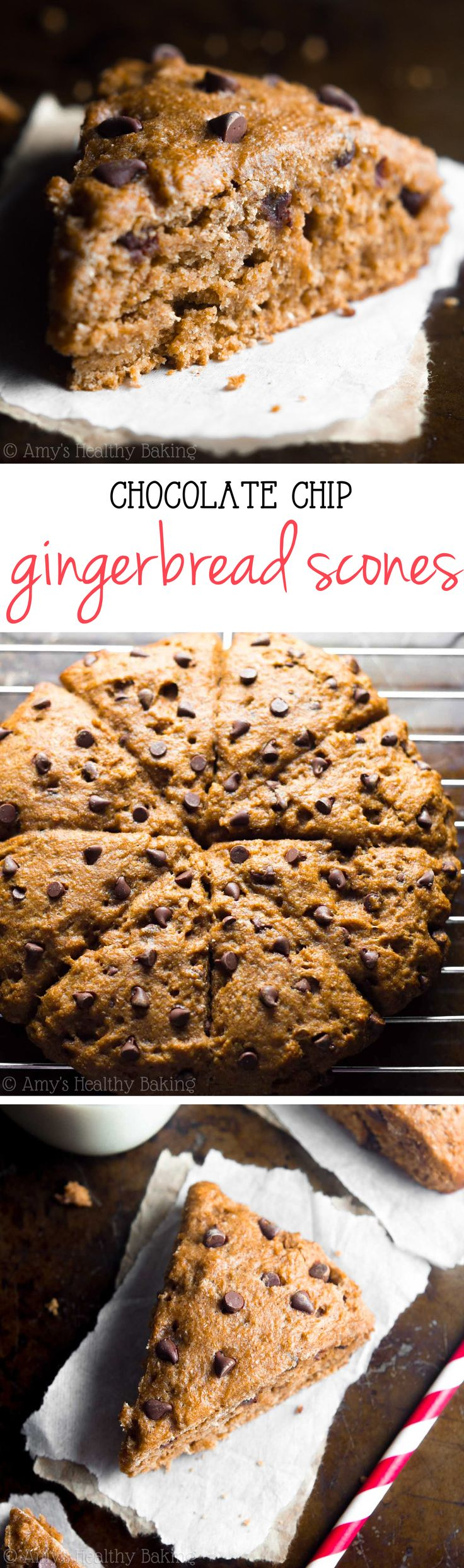 Healthy Chocolate Chip Gingerbread Scones -- say good-bye to dry, crumbly scones forever! These are SO easy, really tender & have 5g of protein!