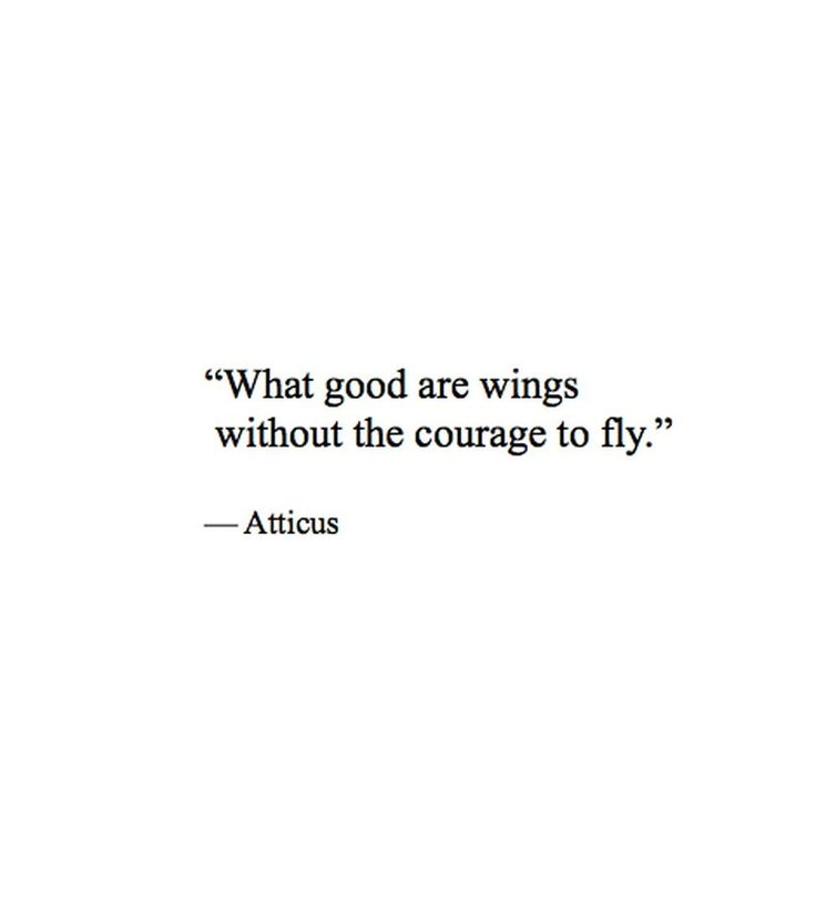 What good are wings without the courage to fly.. ~ Atticus 03.11.16