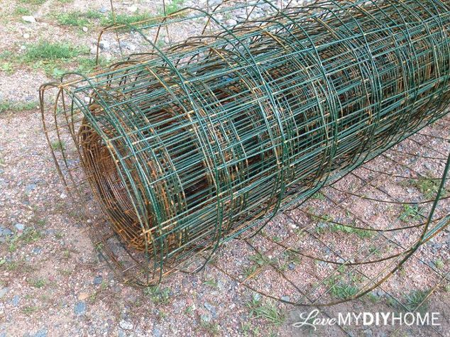 diy tomato cages save the maters, container gardening, gardening
