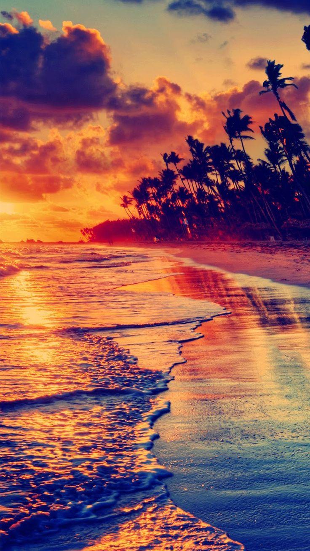 Golden Beach Sunset Tropical iPhone 6 Wallpaper