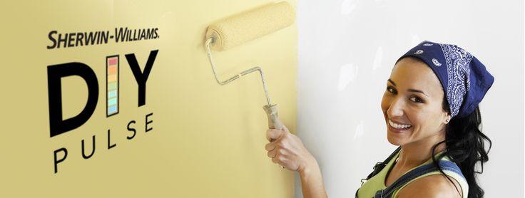 Sherwin Wiliams Paint - DIY Pulse