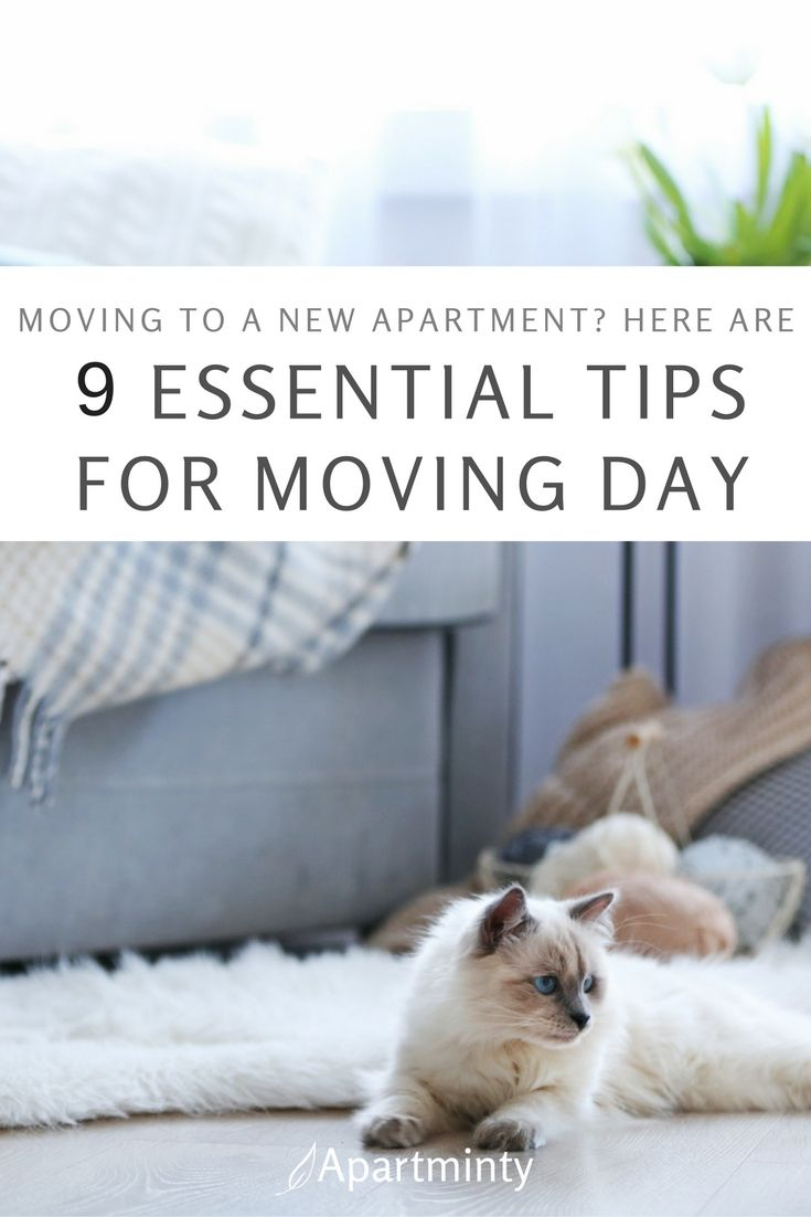 129 Best Moving To A New Apartment Images On Pinterest