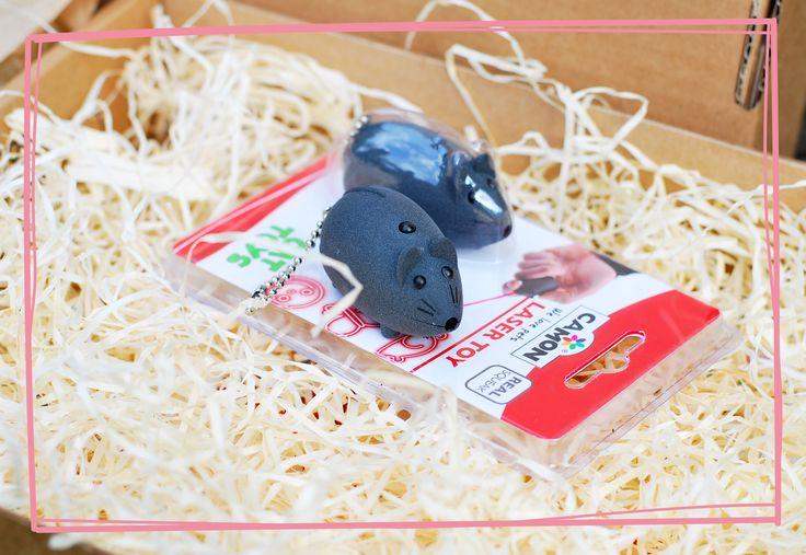 Laserek Camon z majowego Kota w worku :) #mysz #laserek #zabawka #kot #dlakota