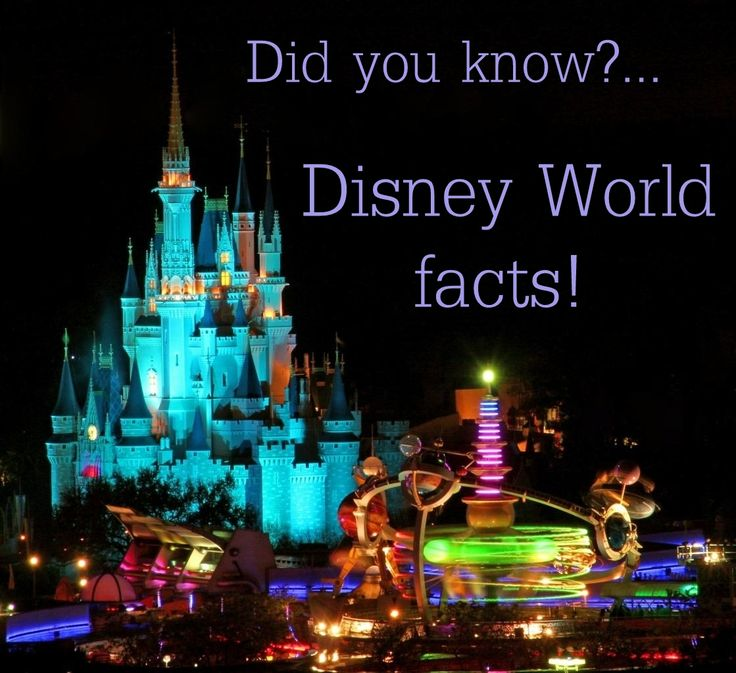 walt disney world thesis statement Thesis chair  parks: disneyland in california and walt disney world in florida   statement is not merely an exaggerated public relations pitch it is actually.