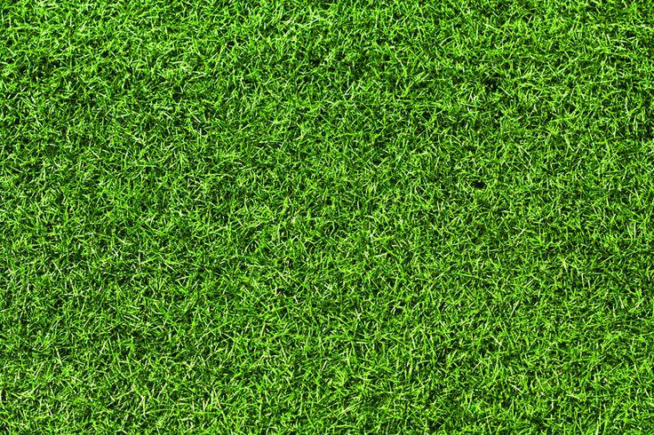 Grass Texture Bing Images Grass Textures