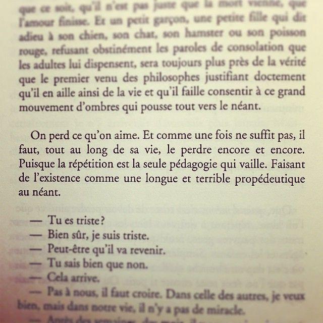 Pensée joyeuse de la nuit... Philippe Forest, Le Chat de Schrodinger
