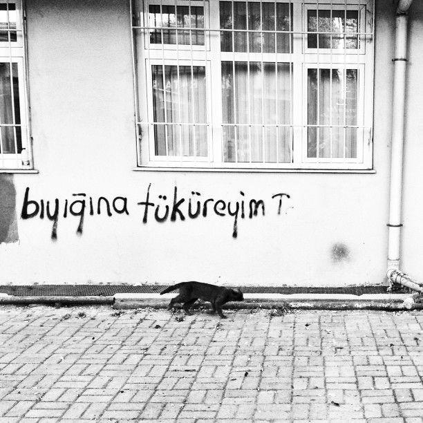 #occupygezi #occupytaksim #direnistanbul #direngeziparki #direngezi #occupyistanbul #occupyturkey #direnturkce #wall