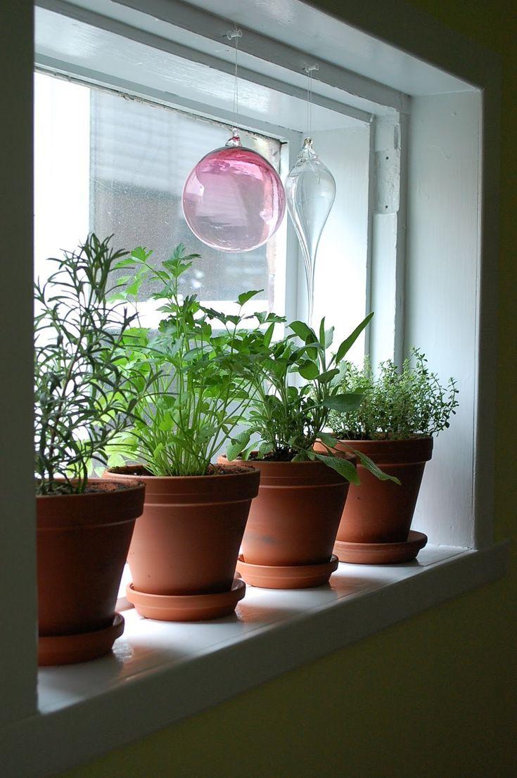 25 beautiful window herb gardens ideas on pinterest growing herbs indoors growing herbs in. Black Bedroom Furniture Sets. Home Design Ideas