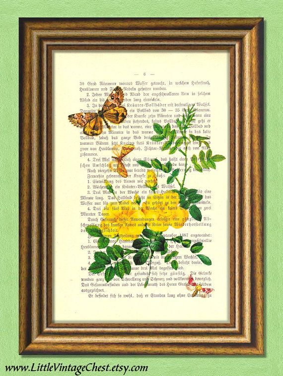 BUTTERCUPS AND BUTTERFLIES  Dictionary art by littlevintagechest, $7.99