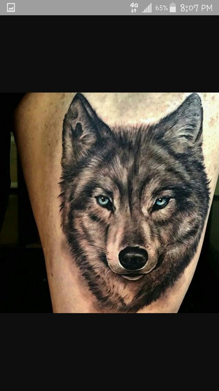 Tattoo motiv wolf tattoovorlage wolfskopf - Wolf Tattoo Magnificent Designs Ideas A Wolf Tattoo Carries Many Meanings And They Work Best When Coupled With Other Symbols