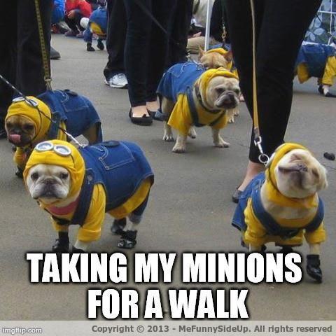 Walking The Minions Meme | Slapcaption.com