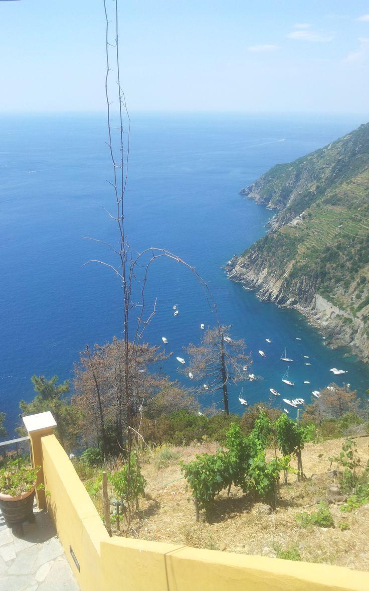At the coast by Riomaggiorre. (vacation Toscany Italy, july 2013).