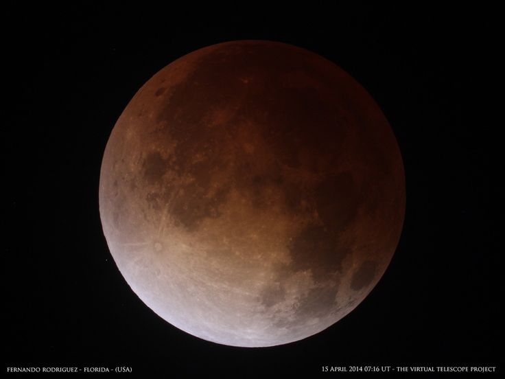 Photographer Fernando Rodriguez of the South Florida Amateur Astronomers Association captured this amazing view of the total lunar eclipse of April 15, 2014 during the totality phase at about 3:24 a.m. ET.
