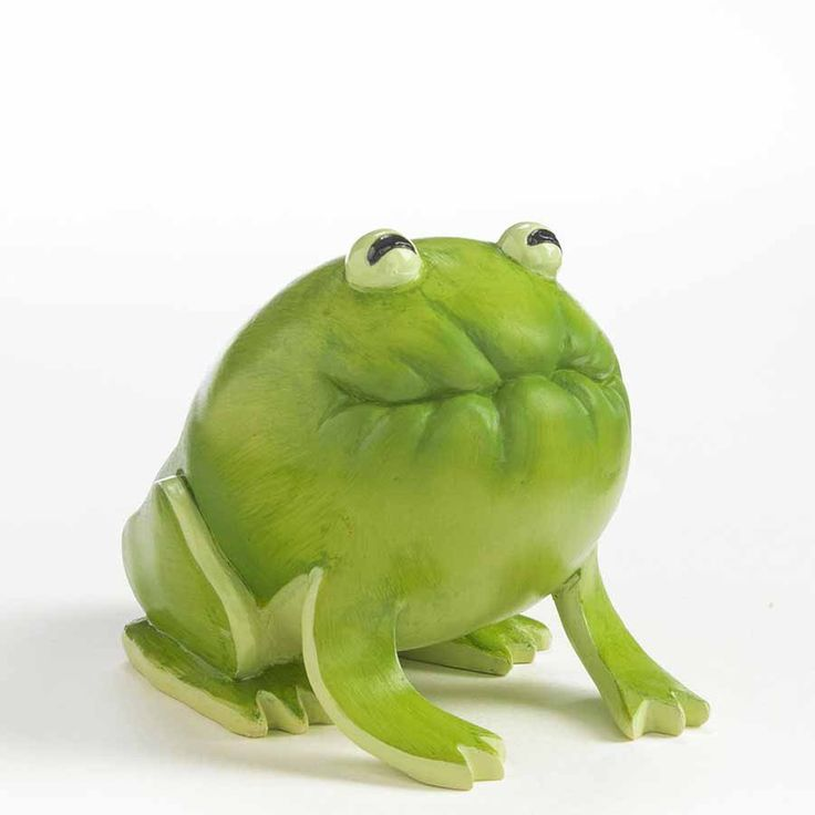 Chayote Squash Frog