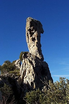 Godfinger :) La Roquebrussanne