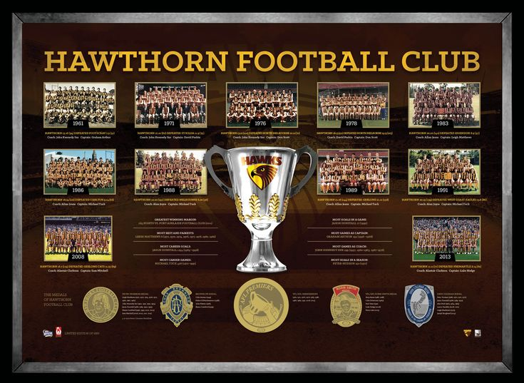 AFL HAWTHORN FOOTBALL CLUB THE HISTORICAL SERIES Features foil-printed replica medals awarded to Hawthorn's greatest Complete with images from all premiership teams, and statistics and records throughout Hawthorn Football Club's history Limited in edition to 1000 units only Presented in a deluxe matted timber frame Officially licensed by the AFL Accompanied with a AFL Players Association certificate of authenticity Approx framed size 780mm x 580mm
