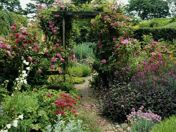 Alan Titchmarsh tips on creating a secret garden  | Garden | Life & Style | Daily Express