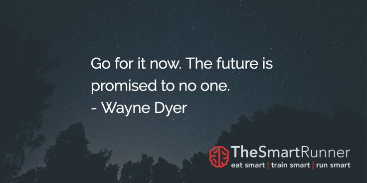 """""""Go for it now. The future is promised to no one."""" - Wayne Dyer"""