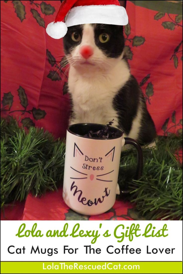 Two of my favorite things are cats and coffee. This inspired me to put together a gift list for the cat and coffee lover. I present you with cat themed coffee mugs. (Disclosure: I received some of these mugs in exchange for being included in my list. )