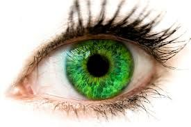 Image result for глаз
