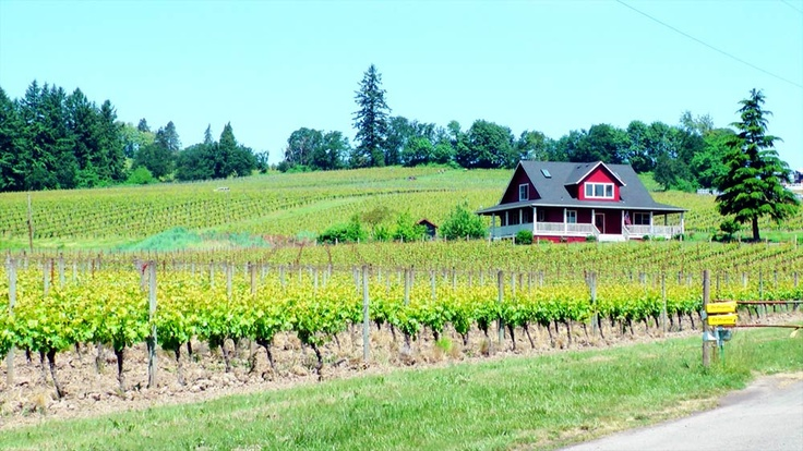 Oregon winery, outside of Dundee #oregon http://www.uniquely-portland-oregon.com