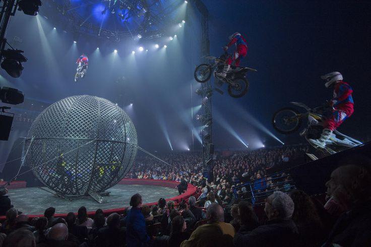 Voilà 30 ans que le Cirque Gruss nous met des étoiles plein les yeux, 30 ans que clowns, dompteurs de fauves et acrobates se partagent la piste de l'un des plus prestigieux cirques de France. Un anniversaire marqué par un spectacle grandiose, à découvrir dès maintenant dans toutes les villes de France !