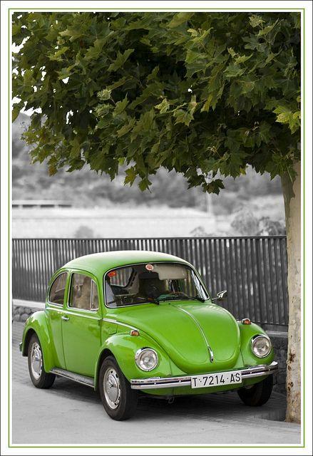 VW beetles: Green Vw, Super Beetles, Vw Beetles, Vw Bugs, Beetles Green, Limes Green, Vans Search, Dreams Cars, Bugs Green