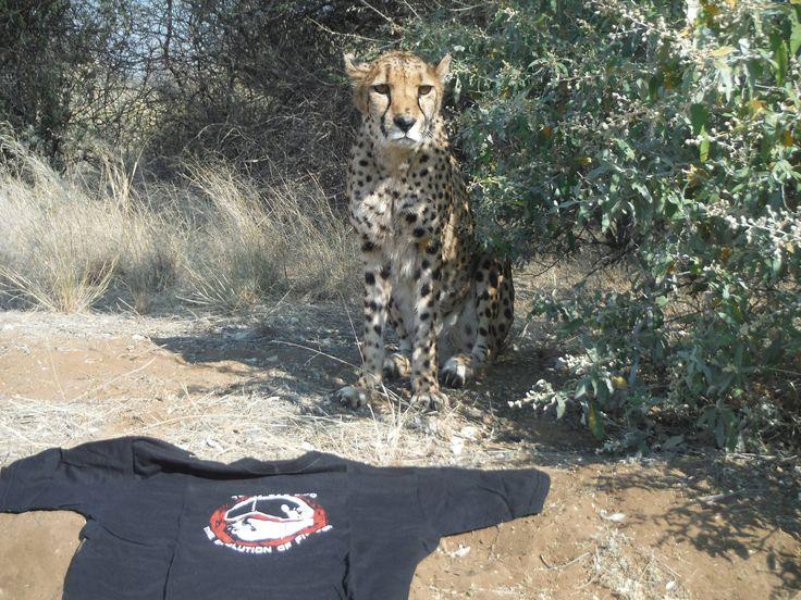 Team TAE-KIBO in Namibia