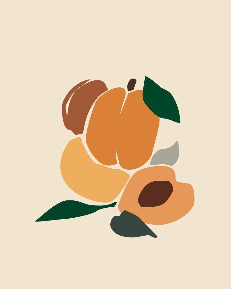 Fruit Composition Orange Minimalism Colors