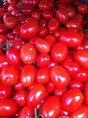 Datterini - Cherry Tomatoes