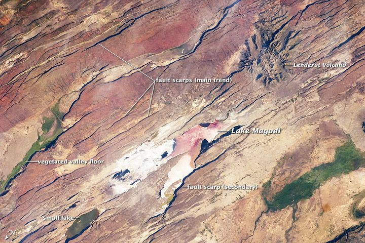 The East African Rift is one of the great tectonic features of Africa, caused by fracturing of the Earth's crust. This astronaut photograph of the Eastern Branch of the Rift (near Kenya's southern border) highlights the classical geologic structures associated with a tectonic rift valley.