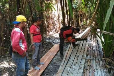 Patroli Karhutla, Polisi Malah Temukan Kayu Olahan di Hutan Konservasi RAPP