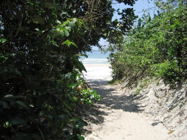 caminho #praia de Lopes Mendes #Ilha Grande