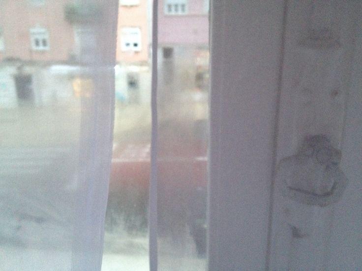 Window view  Photo by Ana Rocha De Sousa