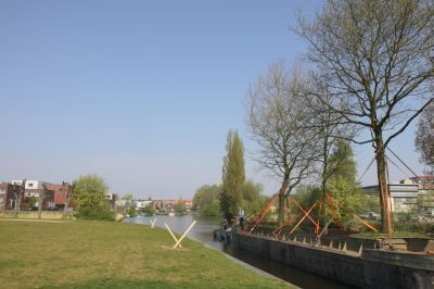 Floating trees, now replanted in park De Linie.