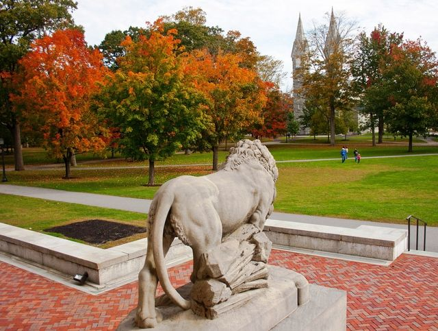 Applying to Bowdoin College? Here's the Key Admissions and Tuition Info: Bowdoin College
