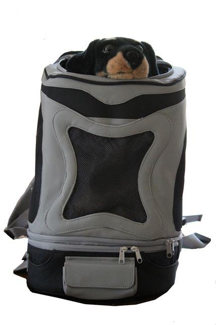 55 best Carry me! Hundetaschen images on Pinterest   Designer hund ...