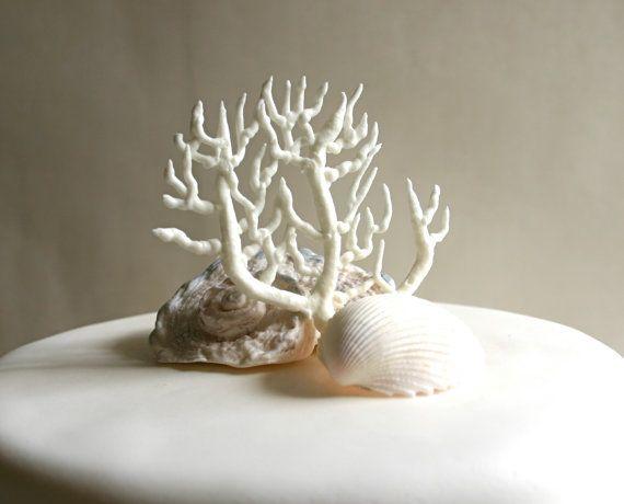 Edible Sugar Fan Coral  Beach Wedding / by andiespecialtysweets, $63.00