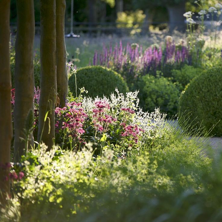 Structure and repetition combined with soft planting turns our past project into a striking garden. #marcusbarnettstudio #gardendesign #garden #luxury #design #planting