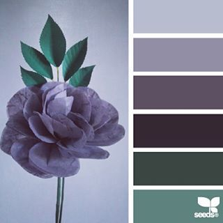 today's inspiration image for { flora tones } is by @marina.flori ... thank you, Marina, for your #SeedsColor photo share!