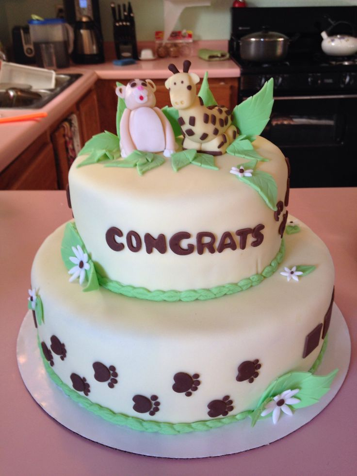 Baby Shower Cakes Asheville Nc