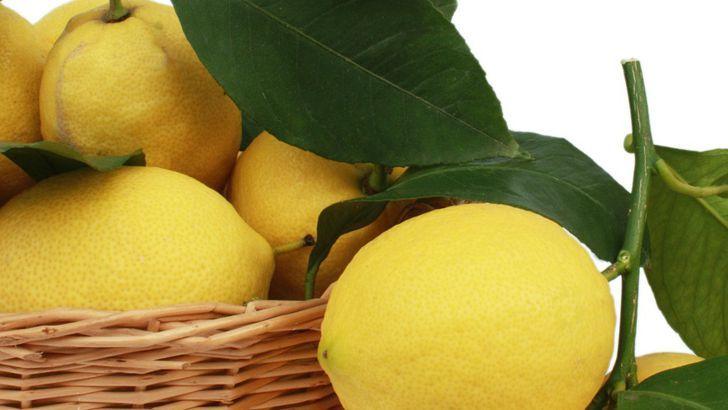 15 argumentů, proč pít ráno vodu s citronem
