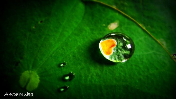 Droplet of Love by Suradej Chuephanich on 500px